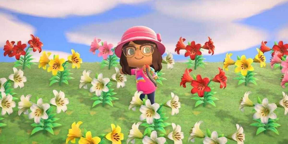 crazy Animal Crossing Bells measures of cash