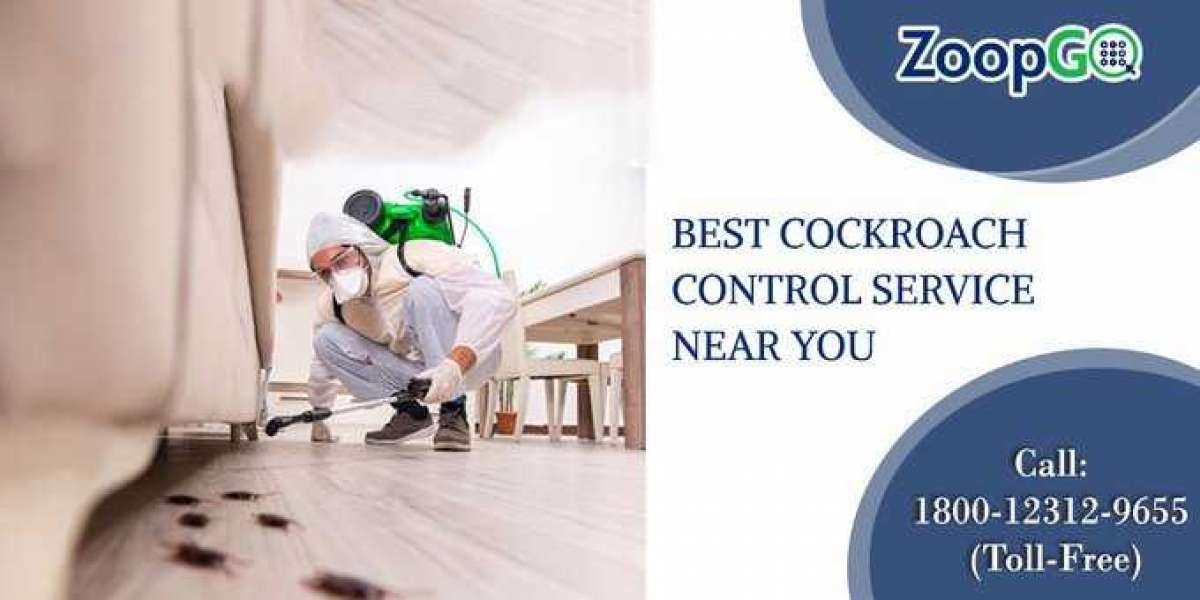 How Pest Control Services in Gurgaon Reduces Bed Bugs?
