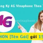 Đăng ký 4G Vina Profile Picture